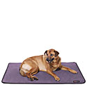 Eco Friendly Dog Beds  |Free Shipping on Orders Over $75