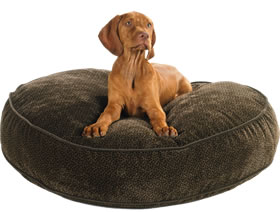 Designer  | 20% Off Storewide | Designer Dog Beds, Pet Beds