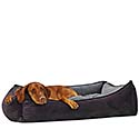 Senior Dog Products  |Free Shipping on Orders Over $50 Storewide| Orthopedic Dog Beds, Dog Harnesses, Pet Steps, Dog Boots