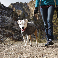 Ruffwear | Free Shipping on Orders Over $125 - Beds, Harnesses, Collars, Leashes |
