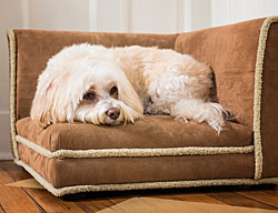 Dog Sofas |10% Off Storewide|  Dog Sofa Beds, Dog Couches