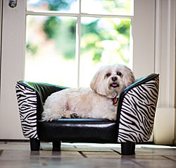 Dog Sofas |30% Off Storewide|  Dog Sofa Beds, Dog Couches