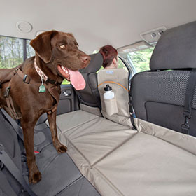 Dog Car Barriers |  Free Shipping on Orders Over $75