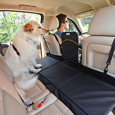 Dog Car Barriers |  20% Off Storewide!