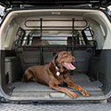 Dog Car Barriers |  Free Shipping on Orders Over $49 - some exclusions apply!