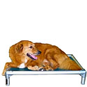 Elevated  Dog Beds  | Free Shipping on Orders Over $125