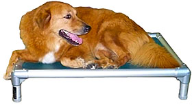 Kuranda Beds  | Elevated Dog Beds, Raised Dog Beds | 30% Off Storewide