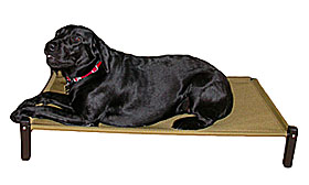 Pillow Dog Beds  | 10% Off | Sale Prices | Rectangular Dog Bed, Rectangular Dog Beds