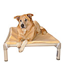 Kuranda Dog Beds | Dog Beds & Pet Beds
