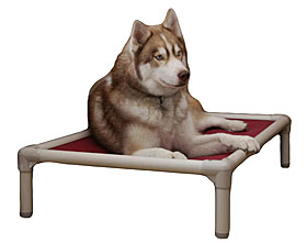 Kuranda | FREE SHIP Chew Proof Dog Beds & Pet Beds