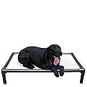 Elevated  Dog Beds  |Free Shipping on Orders Over $50 Storewide|Sale Raised Dog Beds |  Kuranda Dog Beds | Doggy Snooze Dog Beds