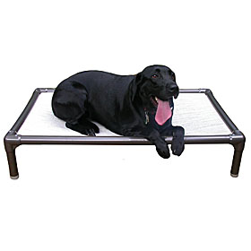 Elevated  Dog Beds  |Free Shipping on All Orders - some exclusions apply!|Sale Raised Dog Beds |  Kuranda Dog Beds | Doggy Snooze Dog Beds