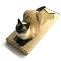 Cat Scratching Posts  |20% Off Storewide| Cat Towers | Cat Trees