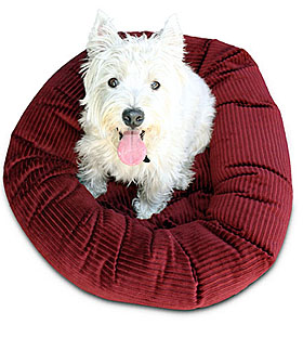 Luca for Dogs | FREE SHIP Dog Beds & Pet Beds, Mats