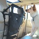 Dog Car Barriers |
