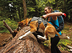 Ruffwear | Free Shipping on Orders Over $75 - Beds, Harnesses, Collars, Leashes