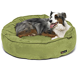 Eco Friendly Dog Beds  |10% Off - Free Shipping on All Orders - some exclusions apply!| Sale ECO FRIENDLY Dog Beds, Green Dog Beds