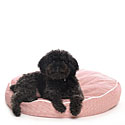Pillow Dog Beds  |30% Off Storewide| Sale Prices | Rectangular Dog Bed, Rectangular Dog Beds