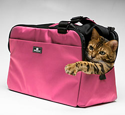 Dog Travel Crates |  10% Off - Free Shipping on All Orders - some exclusions apply!