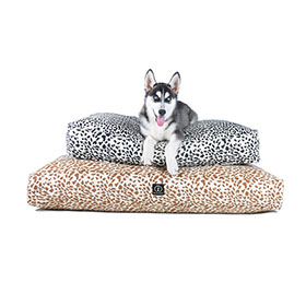 Harry Barker Dog Beds | 20% Off Storewide | Eco Friendly Beds, Bowls, Dog Food Containers