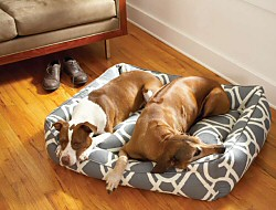 Donut Dog Beds  | Free Shipping on Orders Over $125