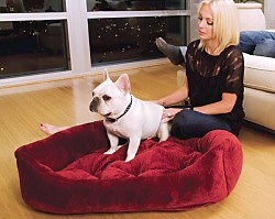 Ripple Velour Napper Dog Bed