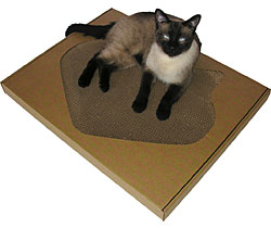 Cat Scratching Posts  | 10% Off | Cat Towers | Cat Trees