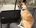 Dog Car Accessories |  Free Shipping on Orders Over $125 - some exclusions apply!