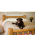 Waterproof Bed & Couch Pet Blanket