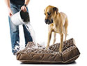 Waterproof Dog Beds | Free Shipping