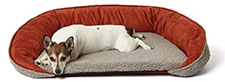 Big Shrimpy Dog Beds | FREE SHIPPING Over $69 | Big Shrimpy Pet Beds