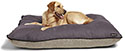 Big Shrimpy Dog Beds | FREE SHIPPING Over $69 - Big Shrimpy Pet Beds