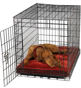 Luxury Crate Mattress