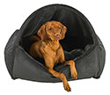 Memory Foam Dog Beds | Best Memory Foam Dog Bed | Cool Gel Dog Beds | Bolster | Tempur-Pedic