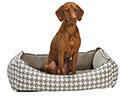 Orthopedic Dog Beds | Orthopedic Pet Beds - Memory Foam Dog Beds - Senior Pet Beds